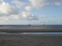 Cape tribulation beach2