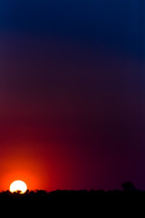 Sun Set (Luis Montemayor) Tags: blue trees sunset red sun sol colors azul mexico atardecer rojo arboles colores dflickr dflickr180307
