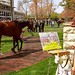 Lexington Kentucky - Keeneland Race Track Painting the Paddock