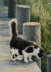 "Prismacolor ""Curiosity"" (gossamerpromise) Tags: art cat prismacolor coloredpencil petportrait"