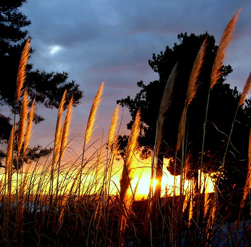 glowing........
