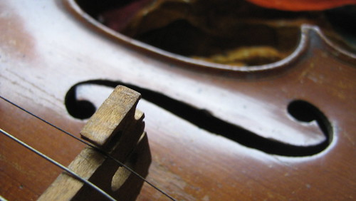 an old violin close-up view