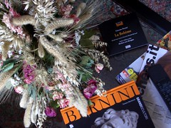 Dry flowers (catalessio) Tags: above flowers composition country dry books things bernini boheme dryflowers