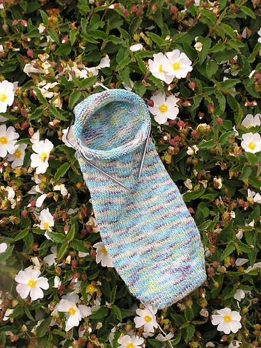 Tofutsies Socks 04