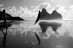 (_Lucas Landau) Tags: sea brazil bw dog praia brasil mar jump paradise pb cachorro fernandodenoronha paraso noronha flydog cacimbadopadre vaigem