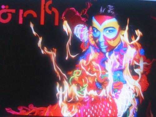 Björk, la fotovoltáica