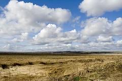 (_miraggio_) Tags: cloud grass clouds landscape oldgrass