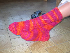 Pomatomus Socks - finished