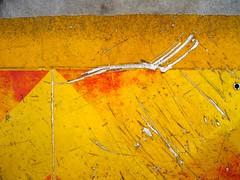 scritch - by tashland