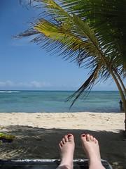 jamaica 167