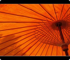 Umbrella | Sun Shade - by fxp