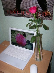 Desk (Su ) Tags: flower rose mouse bedroom mac desk os x vase mightymouse mighty mydesk macbook