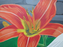 day lily 003 (chelmsfordpubliclibrary) Tags: usa ma mural lily library libraries massachusetts tiger childrens mass cpl chelmsford chelmsfordpubliclibrary chelmsfordlibrary yettifrenkel stevemaloney