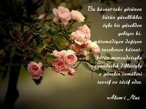 Alem-i Nur dan