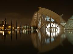 Valencia - Museo della Scienza