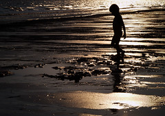 walking on sunshine (AraiGodai) Tags: sunset reflection beach sunshine thailand kid interestingness interesting child olympus explore littleboy silhoutte arai explorefrontpage jantaburi araigordai exploretopten laemsigh superaplus aplusphoto gordai raigordai araigodai