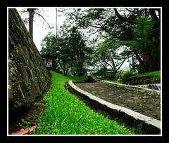 wich side (Emad AL-Saif) Tags: travel tree green garden indonesia resort kuwait q8 pandandresort