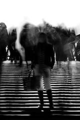 Catwalk - by ubiquity_zh