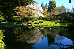 Nitobe Gardens (rldock) Tags: reflection water vancouver japanesegarden waterreflection nitobegardens naturesfinest abigfave anawesomeshot superaplus aplusphoto anawesomesho diamondclassphotographer flickrdiamond