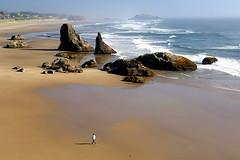 Strolling along Oregon's Central Coast (Abe K) Tags: ocean beach oregon walking coast nikon pacific central d2x strolling wonderworld naturepeople oceanshore youmademyday golddragon platinumphoto goldstaraward