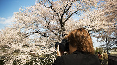 making of * (* tathei *) Tags: camera leica city me japan cherry photographer blossom jonathan   169 miyagi tathei dlux3 shiroshi hitomesenbon