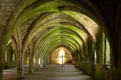 Resurrection in the Undercroft (Dean Ayres) Tags: england nt yorkshire fountainsabbey nationaltrust