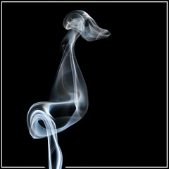 smoke ~ prehistoric bird (Lumendipity) Tags: abstract bird topf25 sdr smoke xray smokeart abigfave smokephotography blackribbonbeauty yesthisissmoke wwwlumendipitycom favescontestwinner