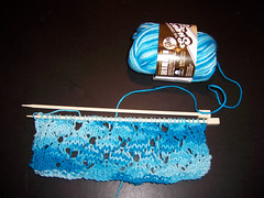 Dishcloth in Process