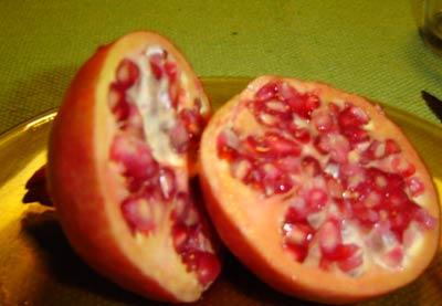 Flores e seus frutos