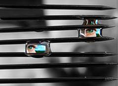 Eye Drops (Bobshaw) Tags: bw white black macro eye water lines eyes pattern pins drop refraction touchofcolour