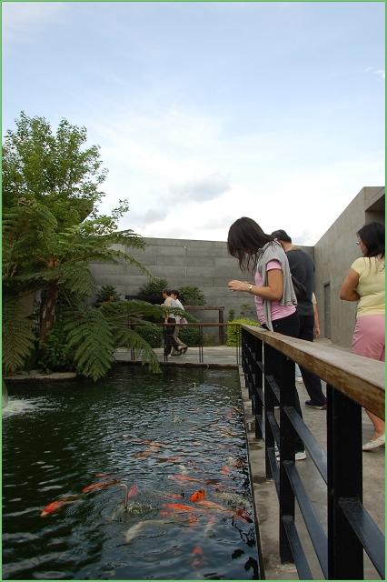 原生應用植物園-08