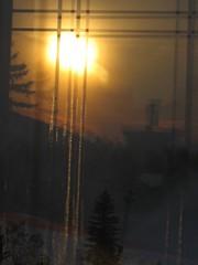 Vertical sunrise view (peggyhr) Tags: orange tree yellow sunrise gold edmonton rooflines
