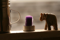 (icka) Tags: sanfrancisco elephant candle figurine windowsill clinique23