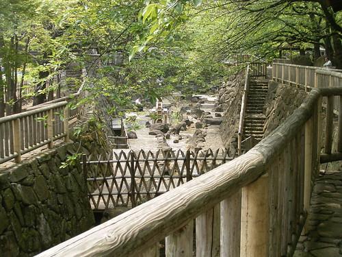 音無川親水公園-01.四月の朝の風景
