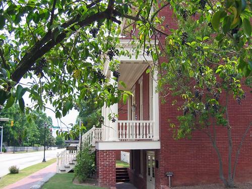 Woodrow Wilsons Boyhood Home