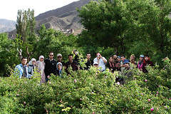 Qamsar, Rose Garden (not all of us!) (Hamed Saber) Tags: friends green rose garden geotagged persian flickr meetup iran persia saber gathering iranian  groupshot kashan hamed rosewater excursion flickrmeetup kachan farsi  flickrites  flickies ghamsar      muhammadi iranianflickrgathering       upcoming:event=184626 qamsar