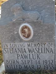 Stefania Pawluk