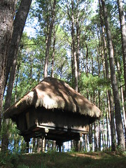 Native House, Sagada