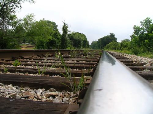Tracks on the TRE