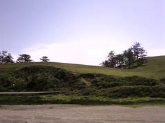 Hills Trees  Sand