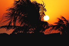 Dubai jamariah beach_1 - by robysaltori