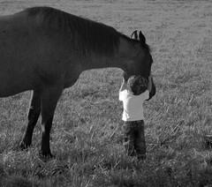 Gentleness - by K. W. Sanders