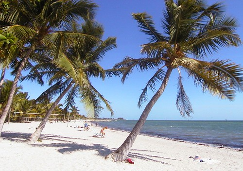 A sandy beach at Key West, Florida