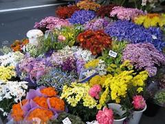 Flower shop in San Francisco (Mordax) Tags: sanfrancisco california city travel urban usa streets america landscape downtown bayarea unionsquare