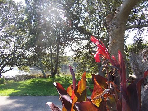 Garden, Cycleway & Fagans Bay
