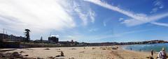 Bondi Beach Panorama