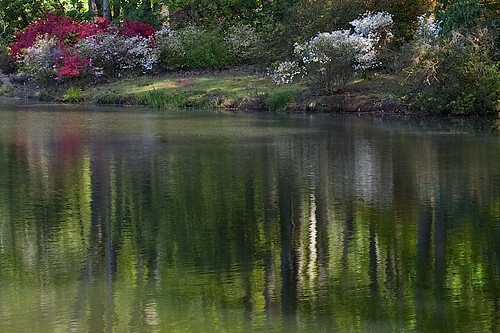 spring reflections 2