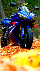 Motorcycle: 2007 Yamaha YZF-R1 (john m flores) Tags: california blue autumn black leaves bike yellow magazine review motorcycles yamaha r1 sportbike monterrey hdr roadrunner superbike yzfr1 carmelvalleyroad