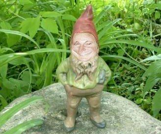 gnomeAaron2pg