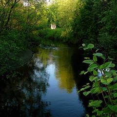 My wild river in summer! (Denis Collette...!!!) Tags: summer green nature bravo poetry dress friendship searchthebest robe quality vert rivire t sweetness labyrinth amiti leyla posie douceur boncuk beautifulearth wildriver magicdonkey goldenphotographer world100f